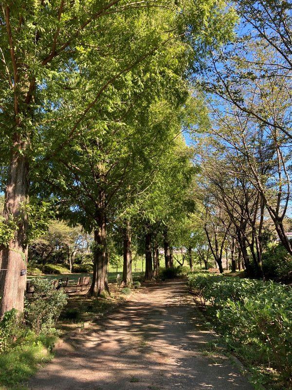 四季の里公園。癒しの緑。